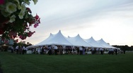 Stock Video Footage of tent wide long flowers