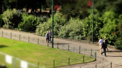 Bournemouth gardens TS close up1 Stock Footage