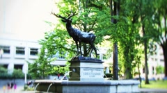 Elk Fountain Portland Stock Footage