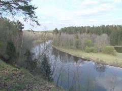 Wonderful panoramic view of river and forest. Stock Footage