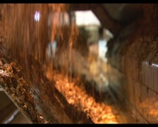 Tobacco 01 Stock Footage