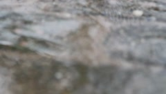 Rain in puddle on blurred pavement Stock Footage