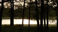 Lake evening 3-Pond 5 Stock Settings HD Stock Footage