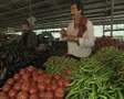 Man selling vegetables in market Footage