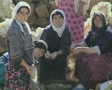 Close up of women washing fleeces in stream Footage