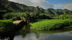 Pan across a Hawaiian jungle landscape with canyons and small lake. Stock Footage
