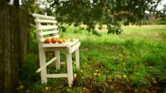 Raindrops falling on the apples lying on the bench Stock Footage