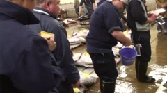 Workers Tagging Tuna At Tsukiji Fish Market during live auction with audio Stock Footage