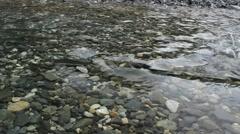 Salmon Alaska Slowed Stock Footage