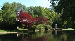 Tranquil Park Stock Footage