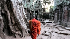 Monks walking inside the temple of Ta Prohm, Angkor, Siem Reap, Cambodia Stock Footage