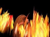 Fire grass Stock Footage