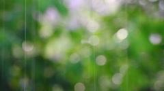 Abstract summer rain defocused background Stock Footage