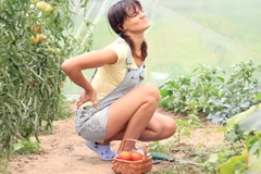 Woman having back pain while working in the garden, dolly shot NTSC - stock footage