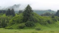 Fog Rolls Over Green Landscape Stock Footage