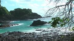 Beach in Fernando de Noronha Stock Footage