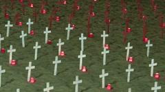 War Memorial Stock Footage