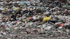Stock Video Footage of Pollution, dumping of garbage