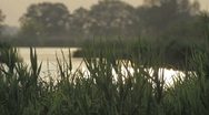 River and lakes in Germany: The Havel Stock Footage