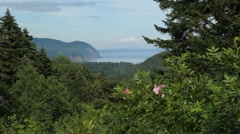 Scenic lookout. Fundy National Park. Stock Footage