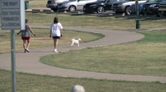 2 Walkers on Path with Dog - stock footage