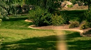 Beautiful Yard Landscaping Stock Footage