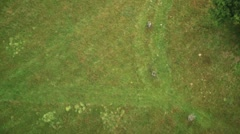 Field - Bird Eye View Stock Footage