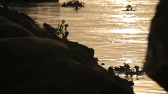 Ganges Riverbank sillhouette Stock Footage