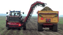 Stock Video Footage of food production potato harvest