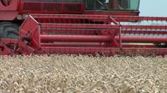 Food production harvest Stock Footage