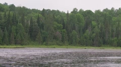 Misty day on the lake Stock Footage