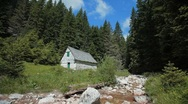 Stock Video Footage of Stone mill near small mountain stream surrounded with pine forest.
