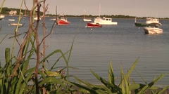 Cape Cod Harbor 4 Stock Footage