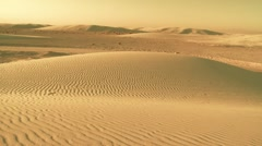 Desert Scene Montage Stock Footage