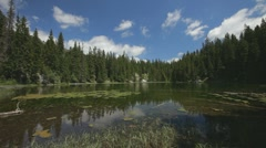 Small and shallow mountain lake surrounded with pine forest. Extreme wide shot. - stock footage