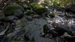 Babbling brook, natural water sound Stock Footage