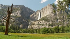 Yosemite Falls and Meadow - stock footage