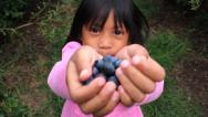 Stock Video Footage of Proud Girl With Fresh Blueberries