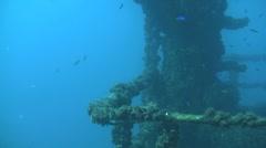 Sunken warship HMAS Brisbane . Stock Footage