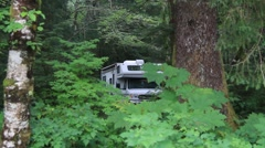 motor home rain forest - stock footage