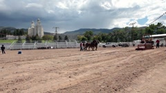 Horse pulling sled competition P HD 9608 Stock Footage