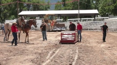Horse pull competition P HD 9641 Stock Footage