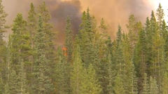 Forest fire, along mountain side, #14, heavy smoke and flames Stock Footage