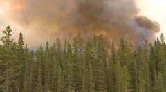 Forest fire, along mountain side, #17, heavy smoke and flames Stock Footage
