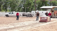 Draft horse pulling heavy sled contest P HD 9677 - stock footage