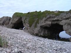 Arches Provincial Park- Newfoundland Stock Footage