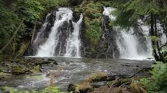 Alaskan Forest Waterfall Stock Footage