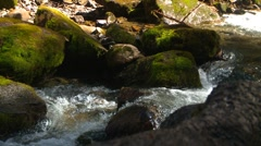 Sarrail Creek, water and moss covered boulders Stock Footage