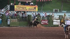 Bull rider in protective gear P HD 9791 Stock Footage