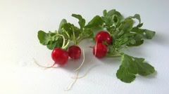 Fresh radishes with drops of water Stock Footage